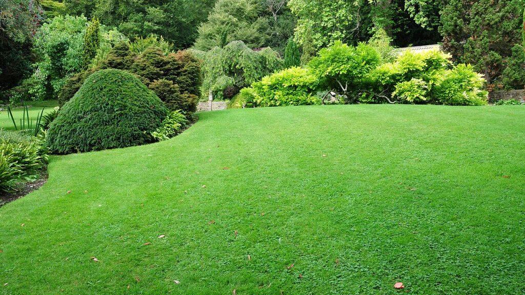Media PA Green Lawn