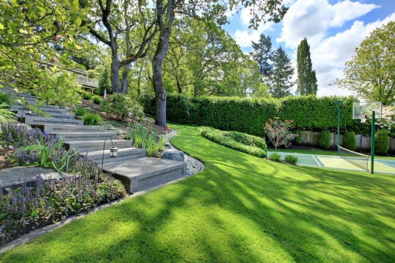 Outdoor Staircase with Grass