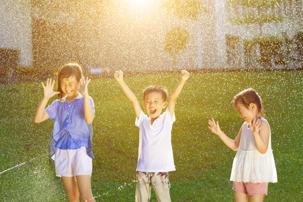 Henderson Fertilizing lets you enjoy your lawn
