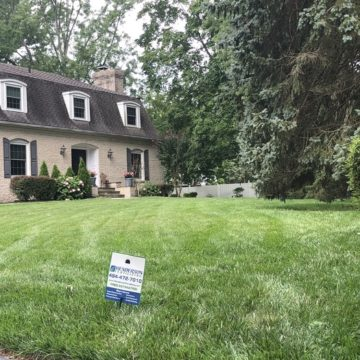 lawn care treatment in Wallingford
