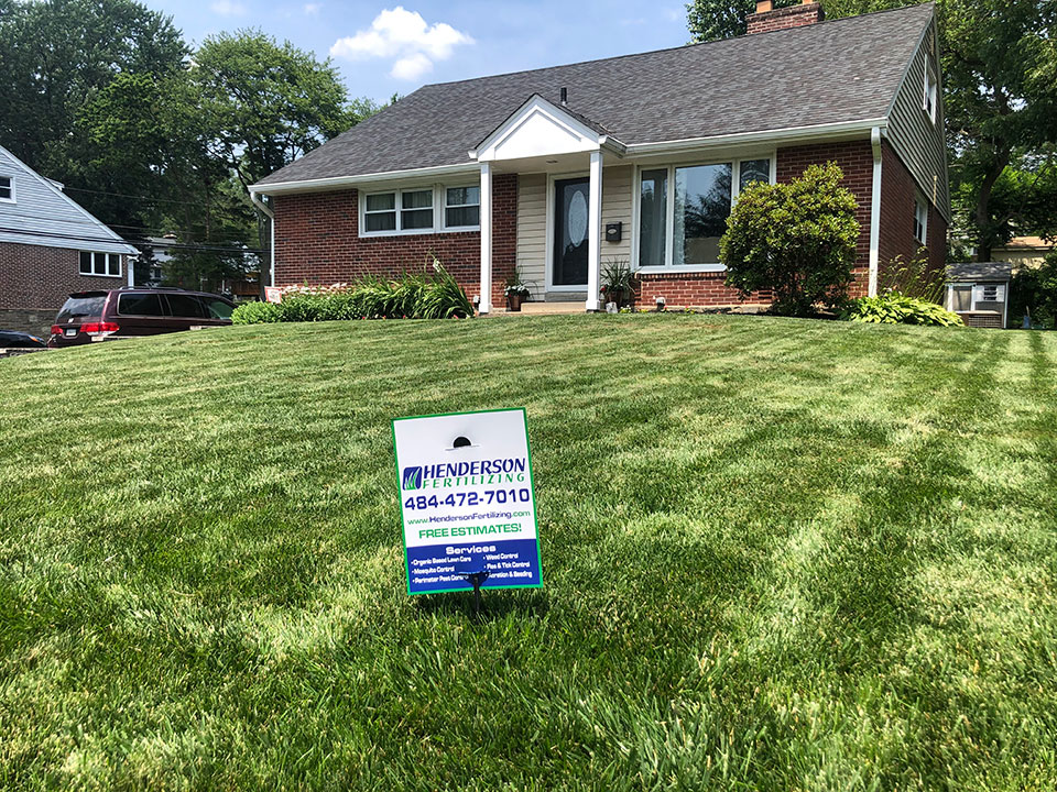 havertown lawn care treatment