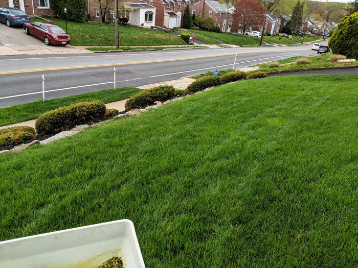 havertown lawn care