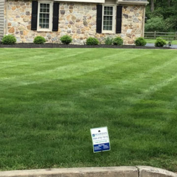 Lawn Care in Media, PA