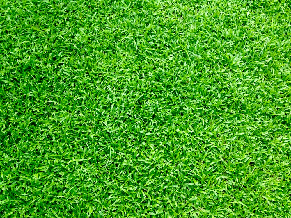 what does lime application do for a lawn